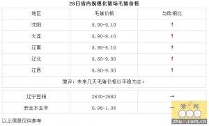 【文捷集团】1月28日猪评:未来几天毛猪价格以平稳为主