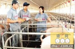 只要做过畜牧兽医工作的即可当生产场长?你有中招吗?