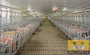 福建省农科院生猪新型养殖项目在长汀元岭开工建设