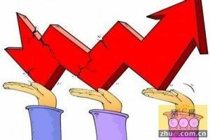 年味仍淡猪价涨势无几 保持高位震荡