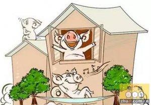 影响2016生猪产业链的十大要素