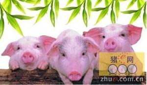 2015年福建省生猪出栏、存栏分别下降14.2%和7.2%
