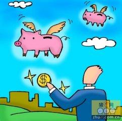 """2016年猪价""""飞""""起来的大胆预测分析及可能存在的影响因素"""