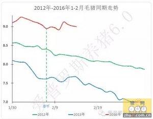 【行情】毛猪价格趋向于小幅震荡下行趋势,补栏热情空前高涨