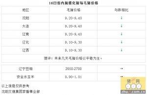 【文捷集团】2月16日辽宁省内猪评:未来几天毛猪价格以平稳为主