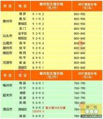 广州日锋- 2016年2月16日行情信息