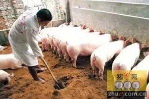 陈瑶生:56%的小散随时可能退出养猪业,规模化是必然趋势