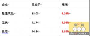 2月16日 温氏、牧原、雏鹰农牧股票大涨