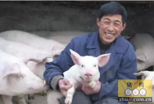 节后养猪户信心增强,走上科学养殖路