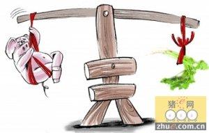 春节期间山东东营猪肉鲜菜价涨不少 元宵后有望恢复常态
