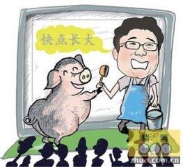 青海省生猪产业科技创新平台送科技下乡侧记