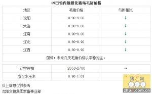 【文捷集团】2月19日辽宁省内猪评:未来几天毛猪价格以平稳为主