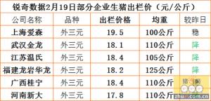 猪易通app02月19日部分企业猪价