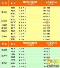 广州日锋- 2016年2月19日行情信息