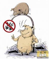 退养生猪种荷花 美了乡村又增收