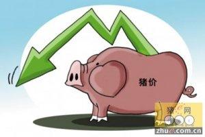 消费不给力猪价两日连下调 养猪户要注意!