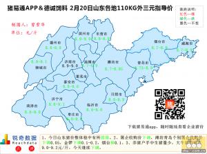 猪易通APP02月20日山东地区外三元价格地图