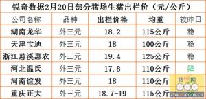 猪易通app2月20日部分企业生猪价格
