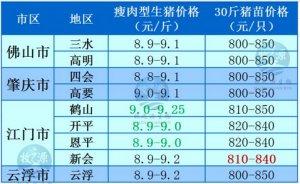 牧之源--广东2月20日猪讯