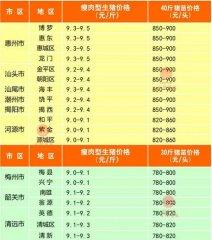 广州日锋- 2016年2月20日行情信息