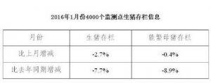 数据!两年生猪存栏对比看生猪产业变化