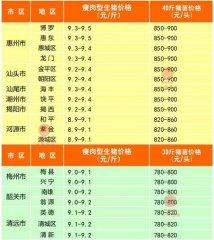 广州日锋- 2016年2月22日行情信息