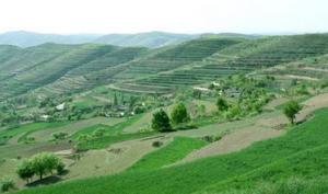 农业部等8部委下发通知扩大新一轮退耕还林还草规模