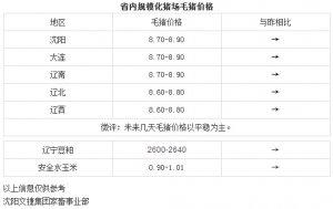 【文捷集团】2月24日猪评:未来几天毛猪价格以平稳为主