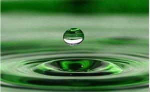 浙江省农科院破解养殖污水治理难题 用微生物给污水洗个澡