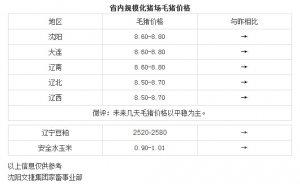 【文捷集团】2月25日猪评:未来几天毛猪价格以平稳为主