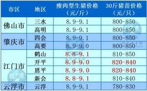 牧之源--广东2月25日猪讯