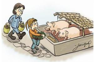 """重庆:彭水农家汉子的""""养猪经"""""""