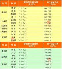 广州日锋- 2016年2月26日行情信息