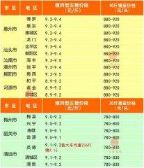 广州日锋- 2016年2月28日行情信息