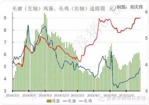 【行情】毛猪价格今日延续横盘,供需双方正在激烈博弈!