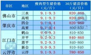 牧之源--广东2016年03月01日猪讯