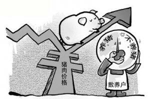 门槛和成本抬高 山东养猪散户减少