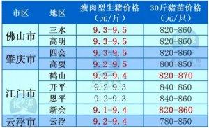 牧之源--广东3月2日猪讯