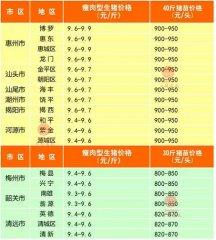 广州日锋- 2016年3月3日行情信息