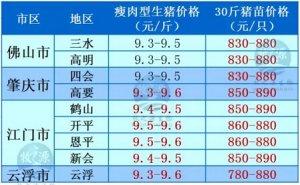 牧之源--广东3月3日猪讯