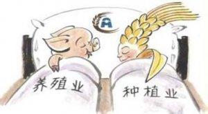 建立有效的农业市场风险预警机制