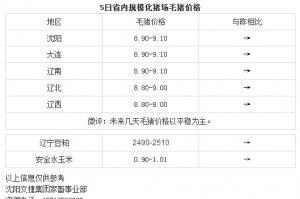 【文捷集团】3月5日猪评:未来几天毛猪价格以平稳为主