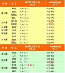 广州日锋- 2016年3月5日行情信息
