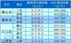 牧之源--广东03月06日猪讯