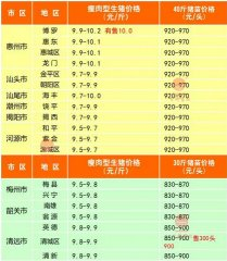 广州日锋- 2016年3月7日行情信息