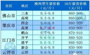 牧之源--广东3月8日猪讯