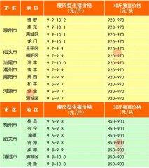 广州日锋- 2016年3月8日行情信息