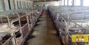 台州全面推行养殖场生态化 沼气可发电,污水不乱排
