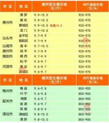 广州日锋- 2016年3月9日行情信息