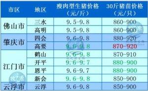 牧之源--广东3月10日猪讯